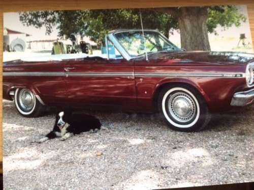 1965 Dodge Dart Convertible For Sale in Fort Collins, CO